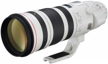 EF 200-400mm f/4L IS USM TC 1.4x